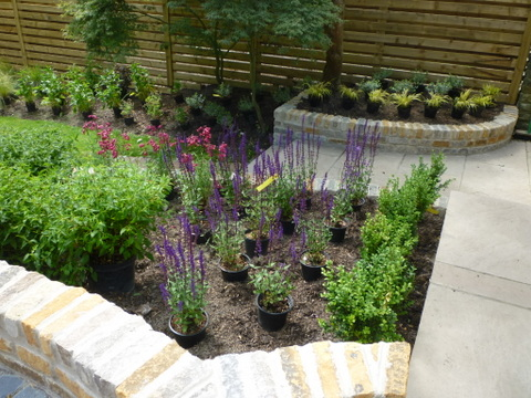 The Transformation of a Yorkshire Garden