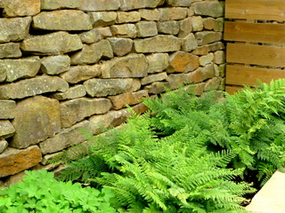 garden landscaping for courtyard at denby dale near wakefield dry stone wall timber fence ferns