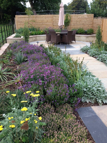 planting in a landscped wetherby garden in North Yorkshire seating salvias, stachys