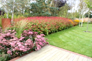 landscape gardening planting for large garden near Wetherby Yorkshire