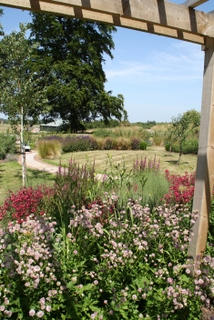 cottage garden landscape planting in Yorkshire by Paperbark garden design long view with birch