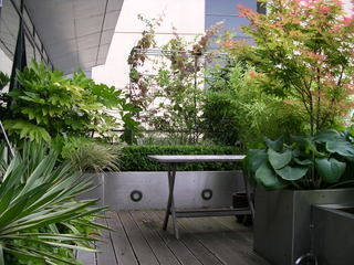 balcony landscaping at Leeds City by Paperbark Garden Design