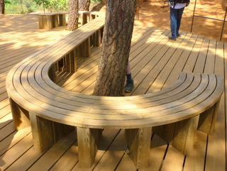Beautiful Curved Timber Seating